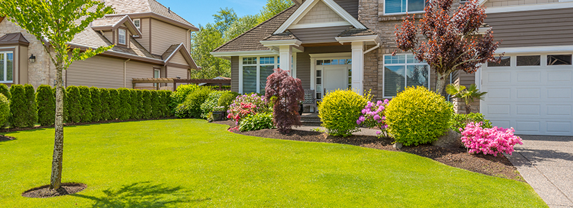 Adding Luxuries To Your Household With Best Lawns